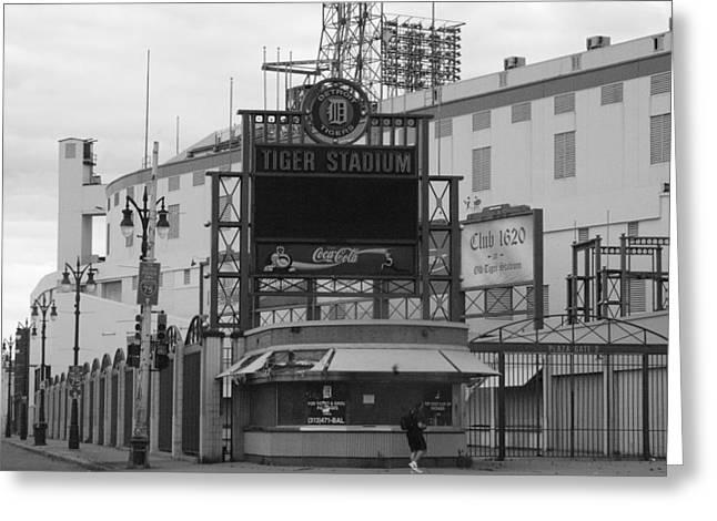 Tiger Poster Greeting Cards - Old Tiger Stadium  Greeting Card by Sabrina  Hall