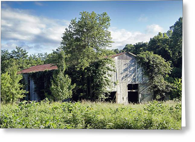 Tobacco Barns Greeting Cards - Old Tobacco Barn Greeting Card by Cricket Hackmann