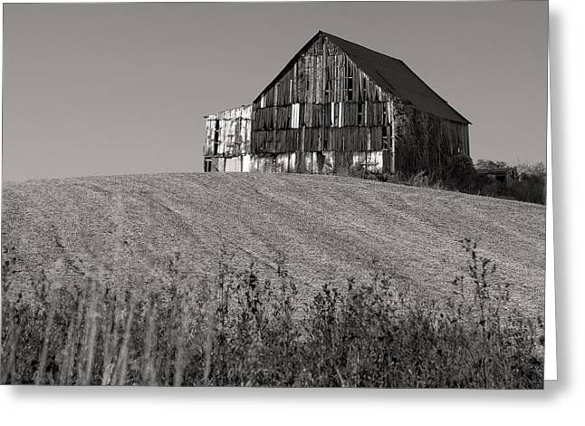 Old Tobacco Barn Greeting Card by Don Spenner