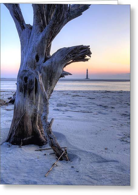 Old Tree And Morris Island Lighthouse Sunrise Greeting Card by Dustin K Ryan