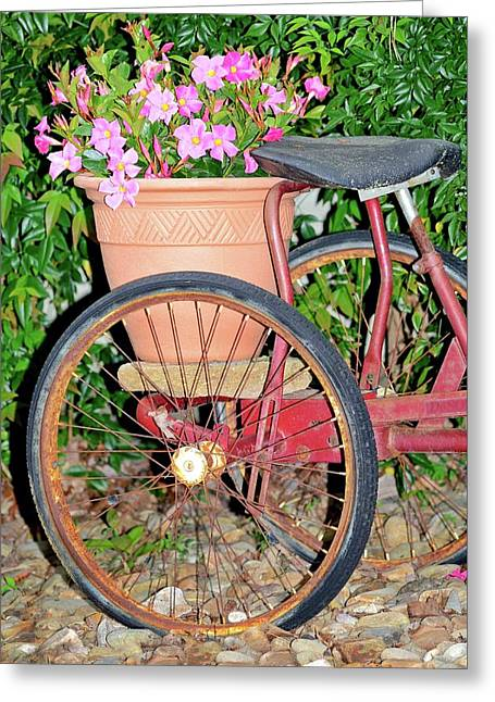 Old Tricycle Greeting Card by Susan Leggett