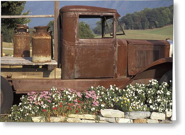 Tennessee Farm Greeting Cards - Old Truck in Tennessee Greeting Card by Stan and Anne Foster