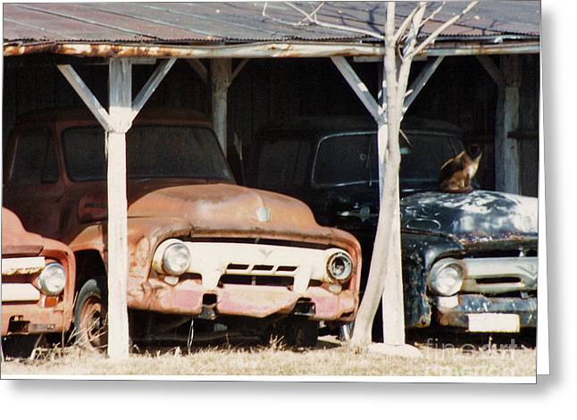 Shack Greeting Cards - Old trucks Greeting Card by Steve  Gass