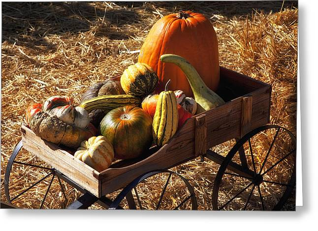 Gourds Greeting Cards - Old wagon full of autumn fruit Greeting Card by Garry Gay