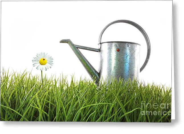 Old Watering Can In Grass With White Greeting Card by Sandra Cunningham