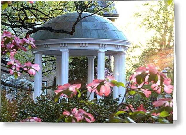 Basketballs Greeting Cards - Old Well Dogwoods and Sunrise Greeting Card by Matt Plyler