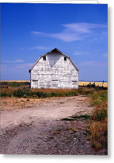 Barn Print Greeting Cards - Old White Barn Greeting Card by Kathy Yates