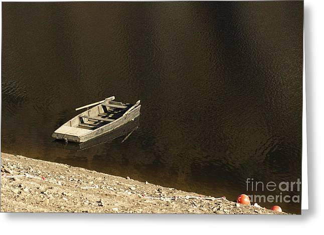 Desert Lake Greeting Cards - Old wooden boat abandoned Greeting Card by Bernard Jaubert