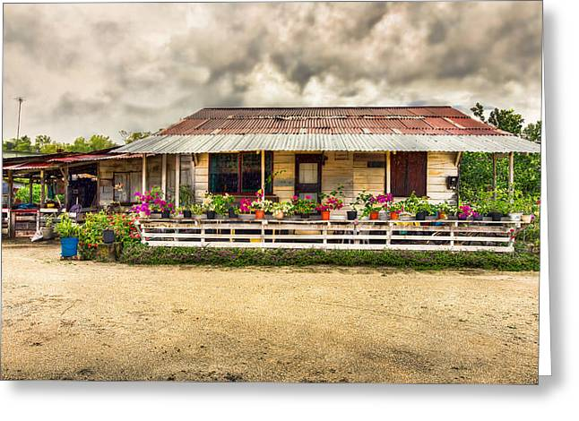 Tin Roof Greeting Cards - Old Wooden House Greeting Card by Nadia Sanowar