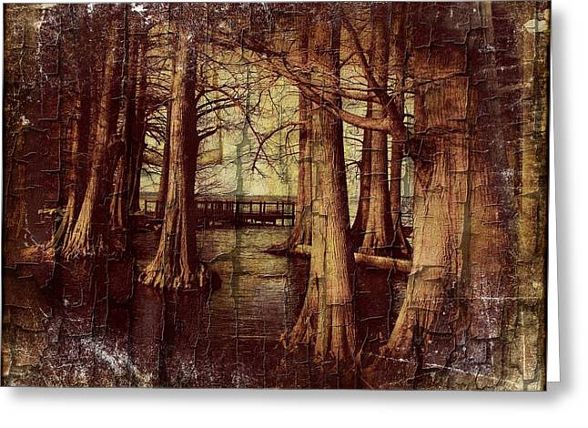 Old World Reelfoot Lake Greeting Card by Julie Dant