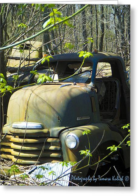 Rusted Cars Greeting Cards - Old Wrecks Submerged in Woods in the Springtime 16 Greeting Card by Tamara Kulish