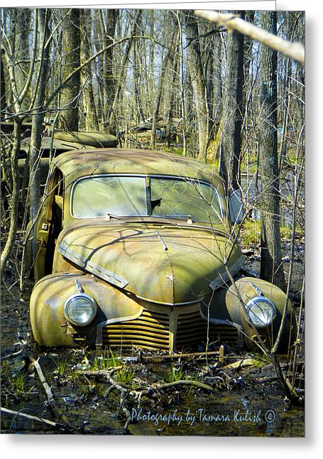 Rusted Cars Greeting Cards - Old Wrecks Submerged in Woods in the Springtime 6 Greeting Card by Tamara Kulish
