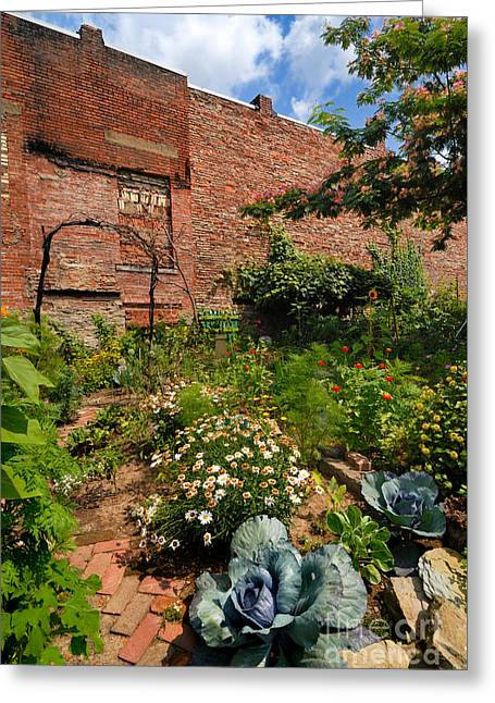 Olde Allegheny Community Gardens Pittsburgh Pennsvylvania Greeting Card by Amy Cicconi