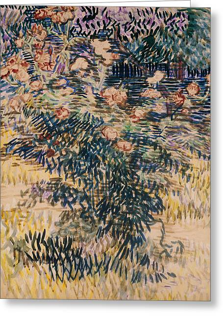 Oleanders, The Hospital Garden At Saint Remy, 1889 Greeting Card by Vincent Van Gogh