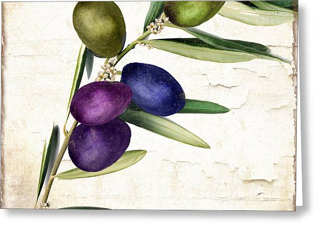 Olive Green Greeting Cards - Olive Branch II Greeting Card by Mindy Sommers