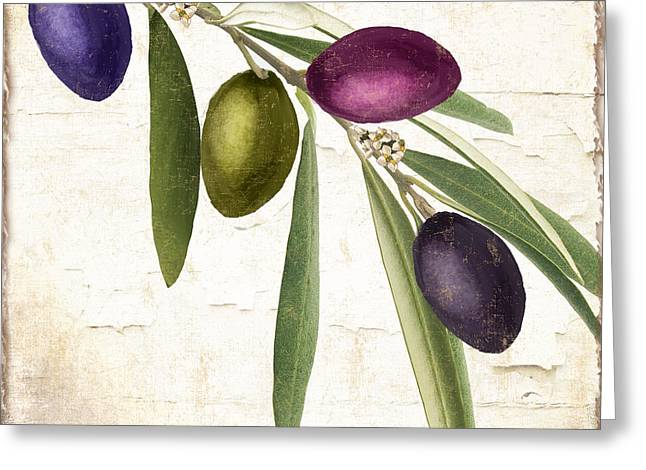 Olive Green Greeting Cards - Olive Branch Greeting Card by Mindy Sommers