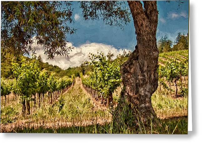 Sonoma County Olives Greeting Cards - Olive Tree and Vineyard Greeting Card by John K Woodruff