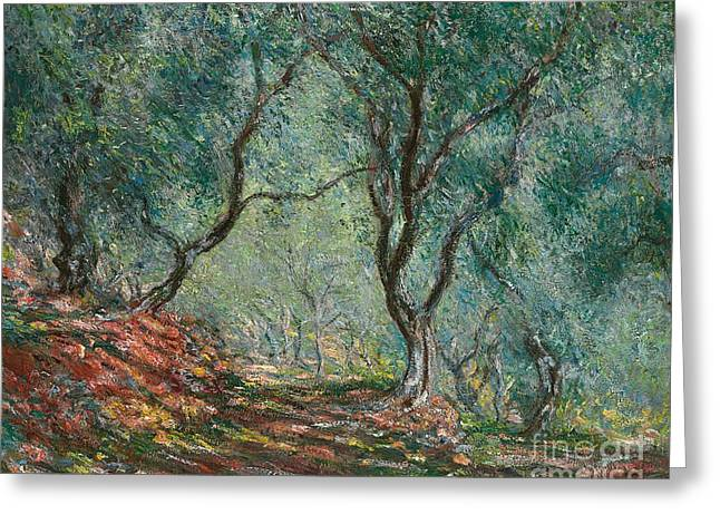 Dappled Light Greeting Cards - Olive Trees in the Moreno Garden Greeting Card by Claude Monet