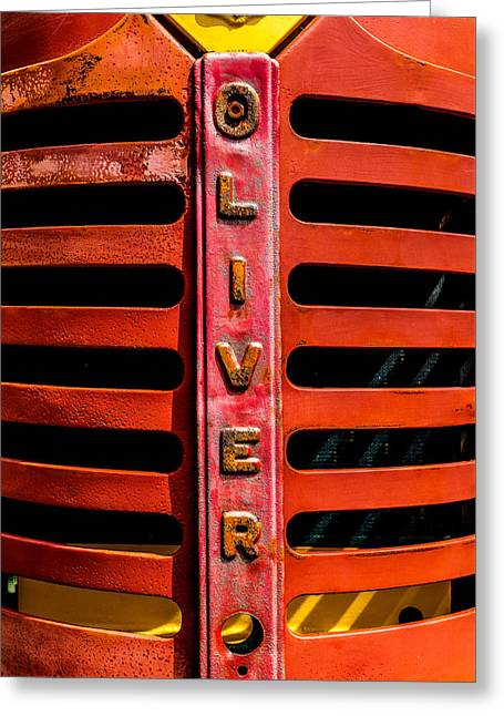 Oliver Greeting Card by Steven Maxx