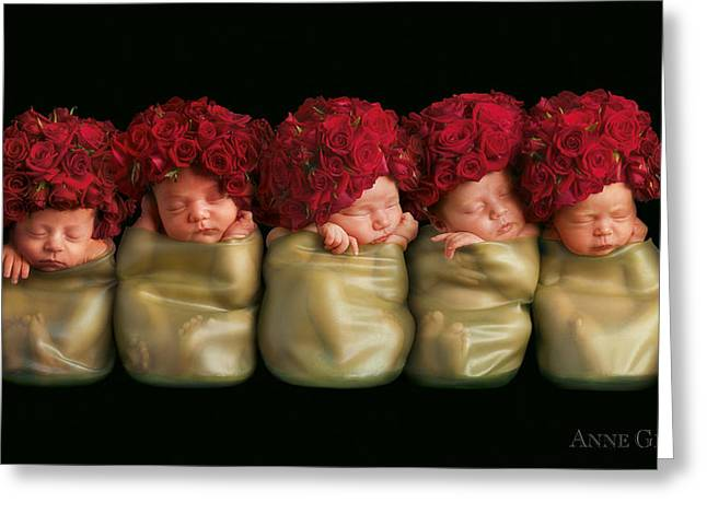 Red Rose Greeting Cards - Olivia, Alice, Hugo, Imogin-Rose & Mya as Roses Greeting Card by Anne Geddes