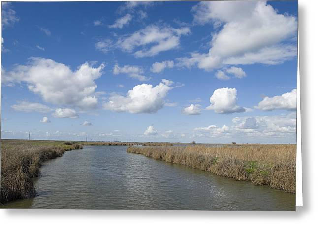 Olson Pond With Clouds And Blue Sky Greeting Card by Rich Reid