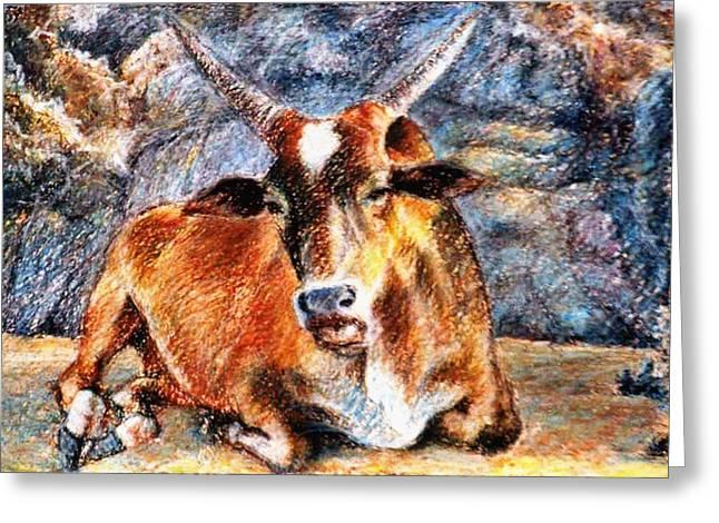 Bulls Pastels Greeting Cards - Om beach bull Greeting Card by Claudio  Fiori
