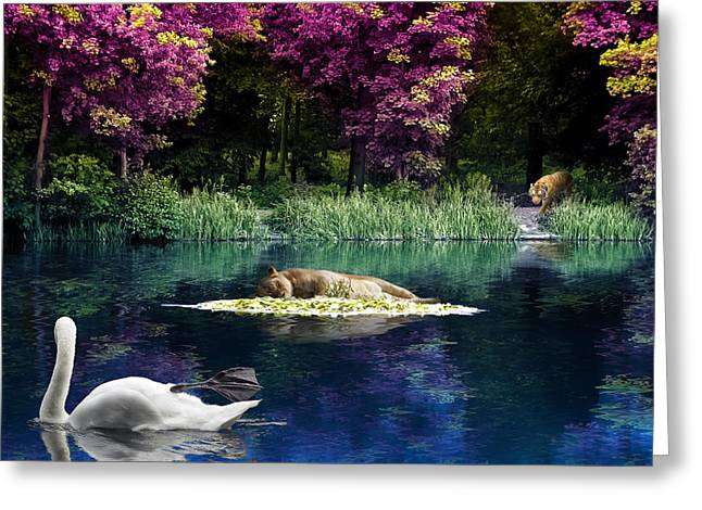 Dolphin Digital Greeting Cards - On a Lake Greeting Card by Svetlana Sewell