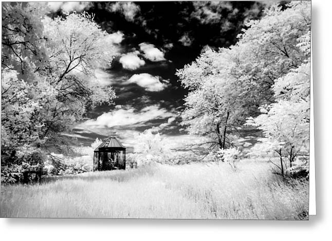 Shack Greeting Cards - On Borrowed Time #21 Greeting Card by Lisa Davids