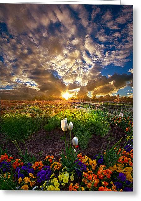 Purple Tulips Greeting Cards - On Earth as it is In Heaven Greeting Card by Phil Koch