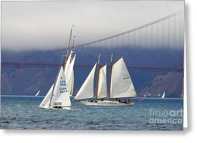On Frisco Bay Greeting Card by Scott Cameron