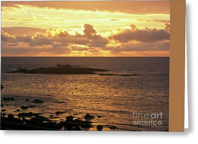 Sea View Greeting Cards - On Golden Pond Greeting Card by Terri  Waters