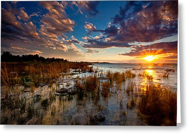Evening Lights Greeting Cards - On Lake Michigans Shore Greeting Card by Dan Holmes