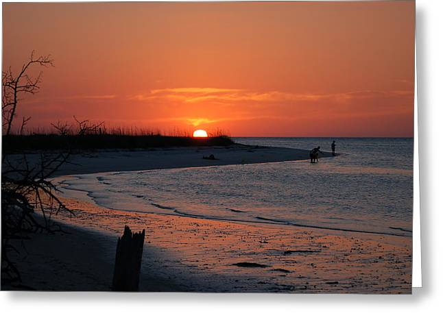 Florida State Parks Greeting Cards - On Lovers Key Greeting Card by Rich Leighton