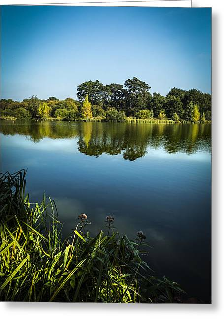 Reflecting Water Greeting Cards - On Reflection Greeting Card by Andy Mayes