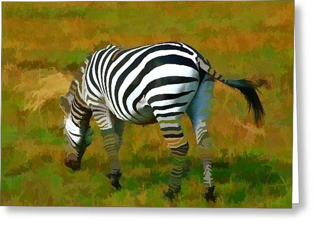Roberto Edmanson-harrison Greeting Cards - On Safari - Zebra Greeting Card by Roberto Edmanson-Harrison