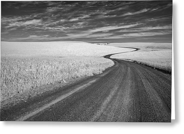 Black And White Mountain Prints Greeting Cards - On the Back Road Greeting Card by Jon Glaser