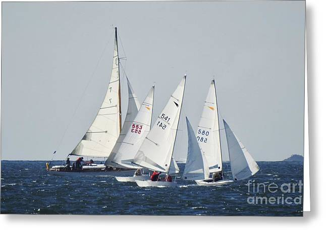 Best Sailing Photos Greeting Cards - On the Bay Greeting Card by Scott Cameron
