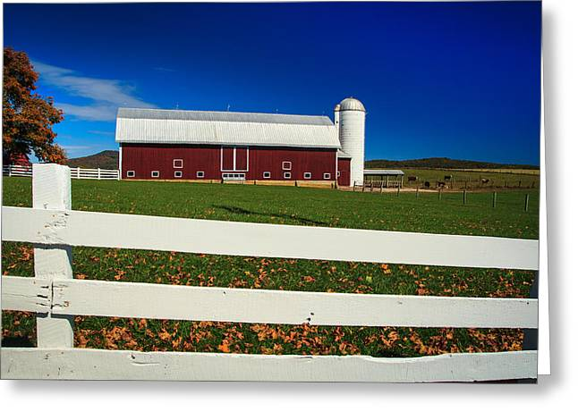 Lewisburg Greeting Cards - On The Fence - On The Farm Greeting Card by Shane Holsclaw
