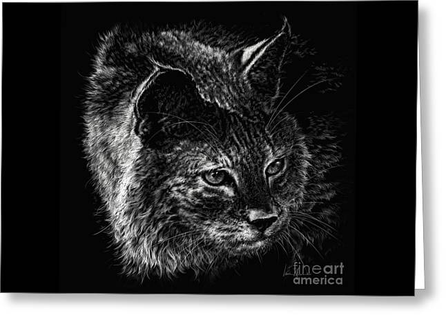 On The Prowl- Bobcat Greeting Card by Laurie Musser