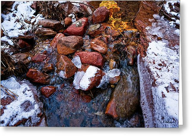 On The Rocks Greeting Card by Christopher Holmes