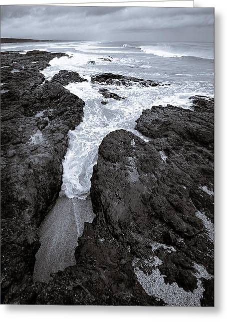 New Zealand Photographs Greeting Cards - On The Rocks Greeting Card by Dave Bowman