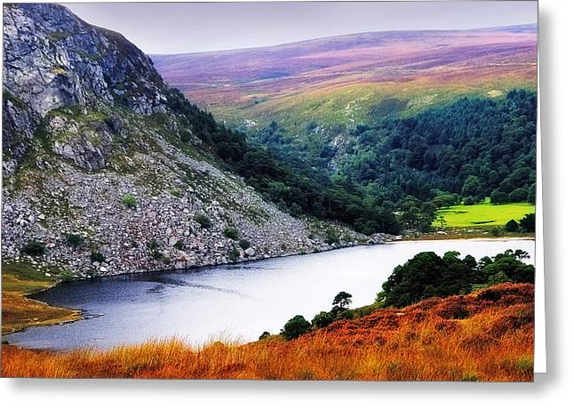 Tour Ireland Greeting Cards - On the Shore of Lough Tay. Wicklow. Ireland Greeting Card by Jenny Rainbow