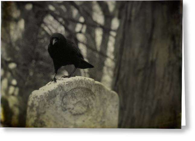 Crows On Tombstones Greeting Cards - On The Tombstone By The Tree Greeting Card by Gothicolors Donna Snyder