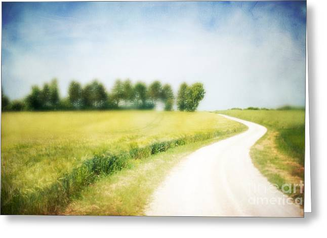 On The Way Through The Summer Greeting Card by Hannes Cmarits