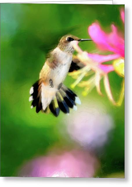 Hovering Greeting Cards - On The Wing Greeting Card by Betty LaRue