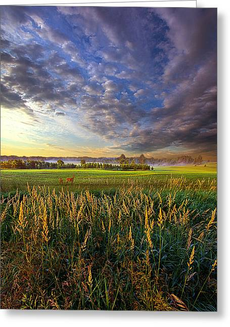 Green Leafs Greeting Cards - On Their Way Greeting Card by Phil Koch