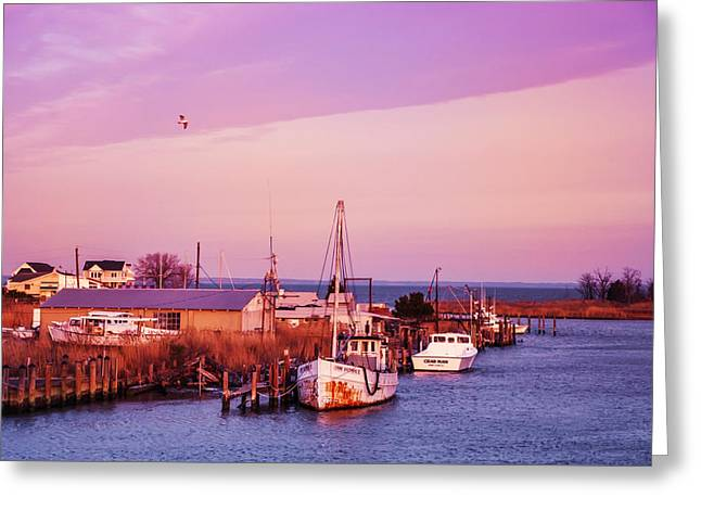 Docked Boats Greeting Cards - On Tilghman Island Greeting Card by Bill Cannon