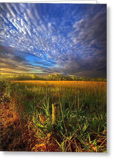 Summer Morning Greeting Cards - On Your Way Back Home Greeting Card by Phil Koch