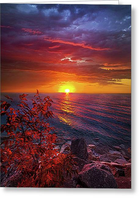 Once Again Greeting Card by Phil Koch