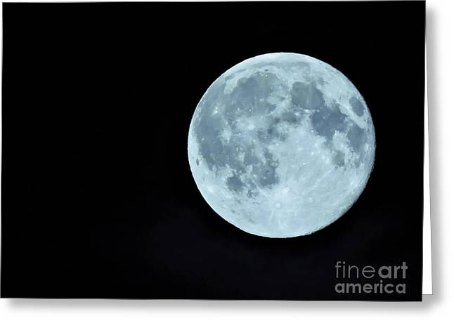 Macrocosm Greeting Cards - Once in a Blue Moon... Greeting Card by Julia Yakub